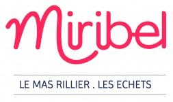Commune de Miribel - Ain 01